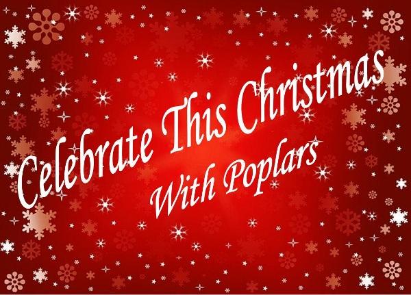 Celebrate Christmas (600x431)